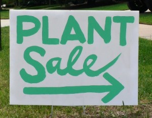 Broadwey, Upwey & District Horticultural Society Plant Sale