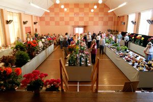 Broadwey, Upwey & District Horticultural Society Summer Show