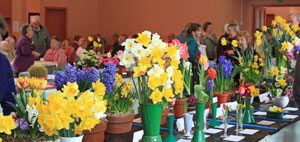 Broadwey, Upwey & District Horticultural Society Spring Show 2012